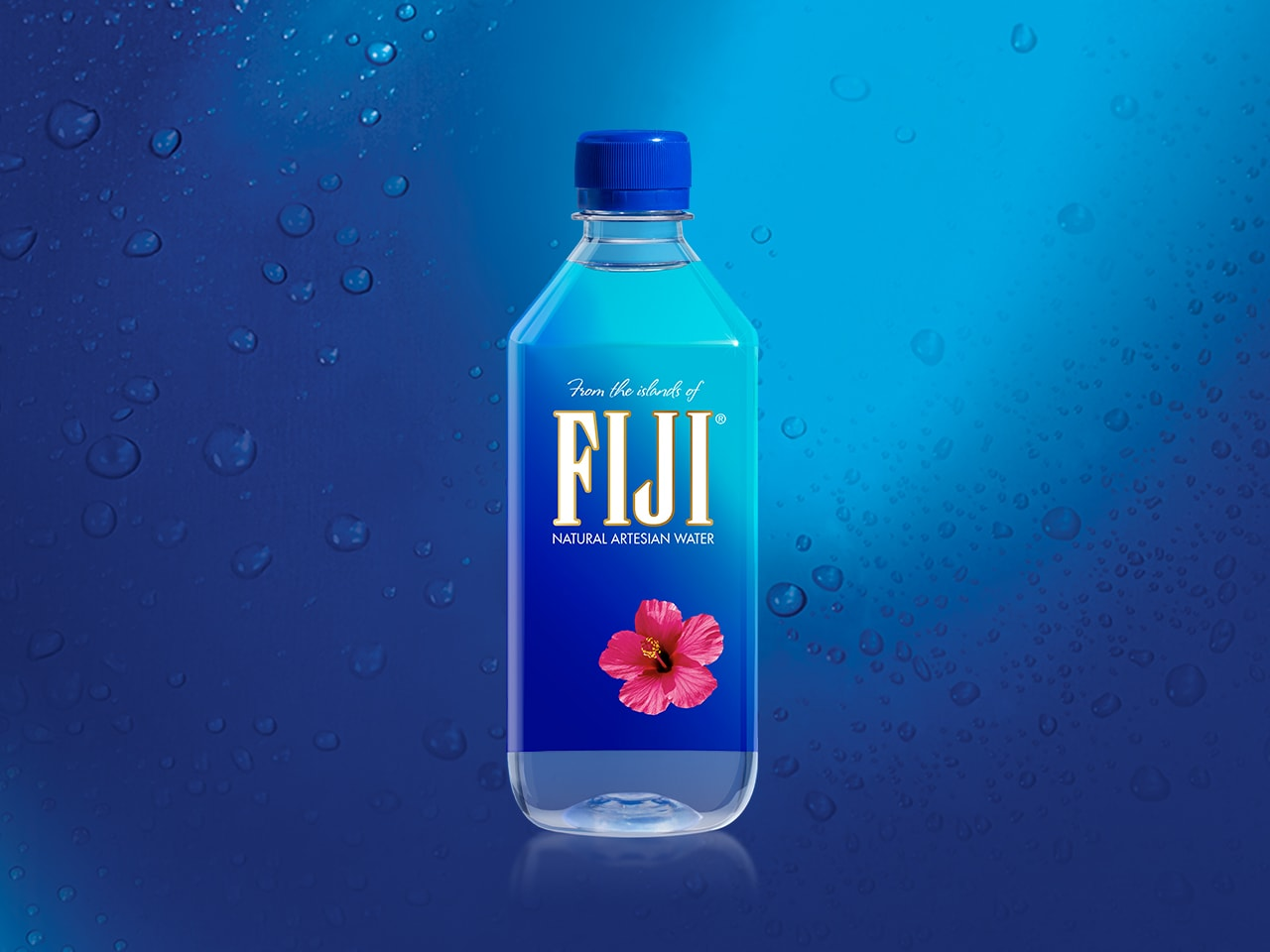 Fiji Water Prices Updated 2019 Hangover Prices